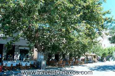 FILOTI - The main square of Filoti with the long - ages plane trees.