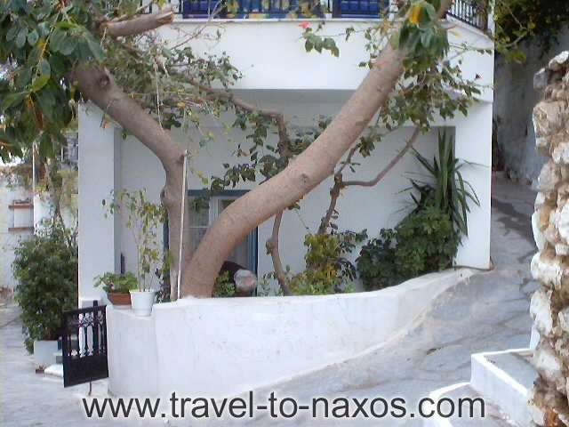 SMALL LADY GARDEN - A picture of the daily life of the habitants of Naxos.